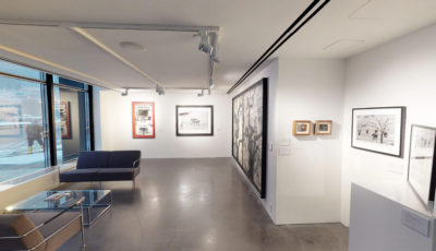 Gallery 1 – Beta
